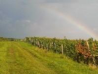 Am Horizont ein Regenbogen